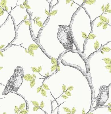 Fine Décor Green Linden Owl Wallpaper