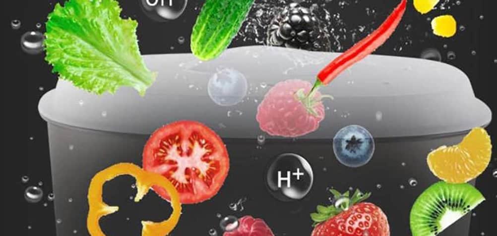 Ultrasonic Ozone for Vegetable
