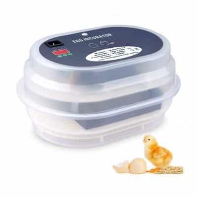 HBlife Egg Incubator for Chicken Eggs