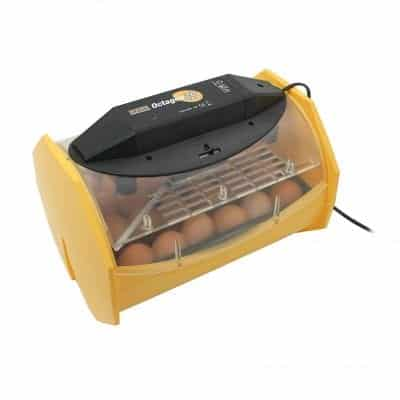 Brinsea Products 24 Chicken Eggs Manual Egg Incubator