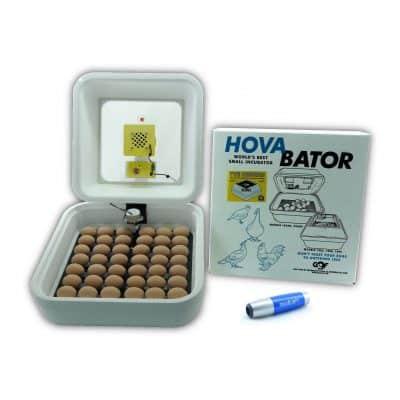Incubator Warehouse Egg Incubator