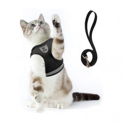 Supet Cat Harness and Leash Set