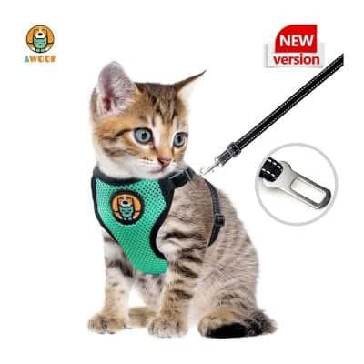 AWOOF Kitten Harness and Leash
