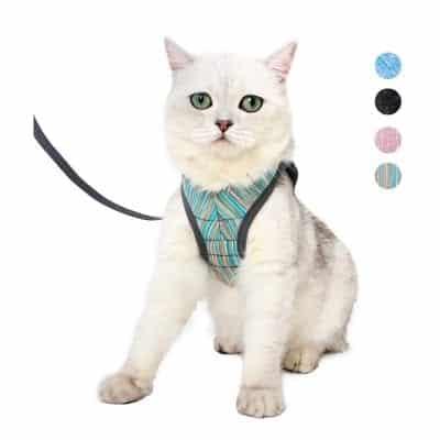 Heywean Cat Harness and Leash