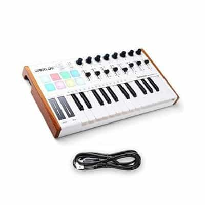 HX Worlde 25 Key USB Portable Mini MIDI Keyboard Controller
