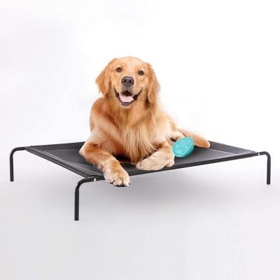 Western Home Elevated Dog Bed for Indoor and Outdoor Use