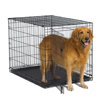 New World Foldable Metal Dog Crate
