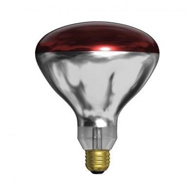 GE Lighting Incandescent Heat Lamp