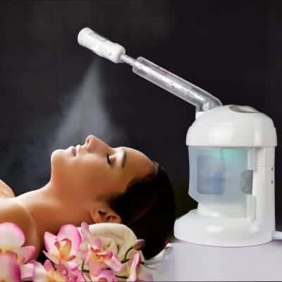 Kingsteam Facial Steamer with Extendable Arm