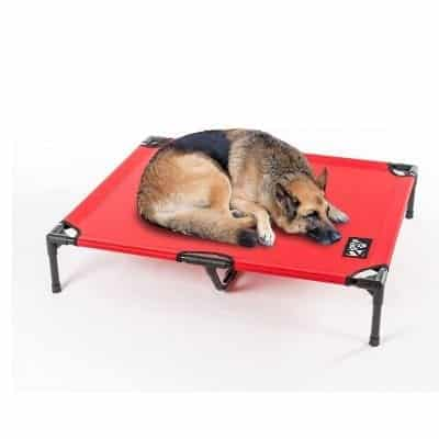 2PET Elevated Pet Bed, Orthopedic and Easy to Clean