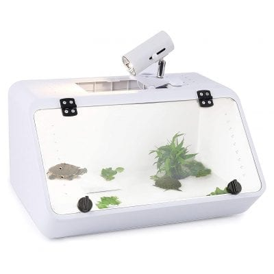 CalPalmy Large Reptile Tank 19 x 10 x 10 Inches See Through Tank